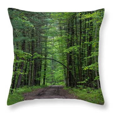 Manistee National Forest Michigan Throw Pillow by Steve Gadomski