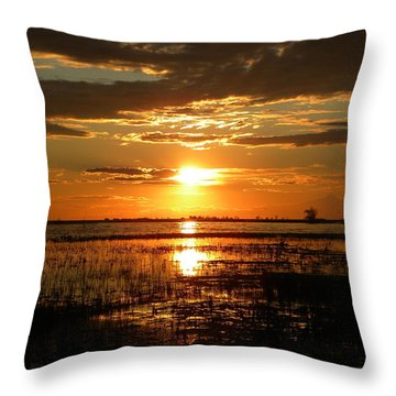 Throw Pillow featuring the photograph Manitoba Sunset by James Petersen