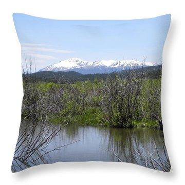 Lake Manitou Sp Woodland Park Co Throw Pillow