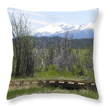 Lake Manitou Sp Woodland Park Co Throw Pillow