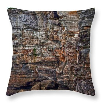 Throw Pillow featuring the photograph Manly Ferry Passing By  by Miroslava Jurcik