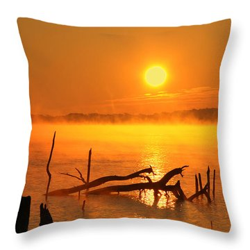 Mantis Sunrise Throw Pillow by Roger Becker