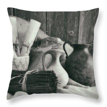 Earth Tone Throw Pillows