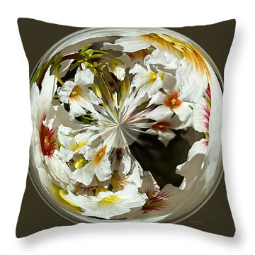 Many Colored Centers Throw Pillow by Phyllis Denton