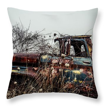 Many Seasons  Throw Pillow by Off The Beaten Path Photography - Andrew Alexander