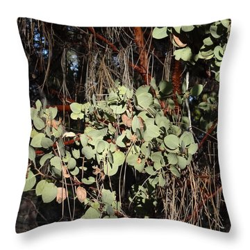 Manzanita Throw Pillow