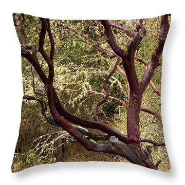 Manzanita Tree Throw Pillow