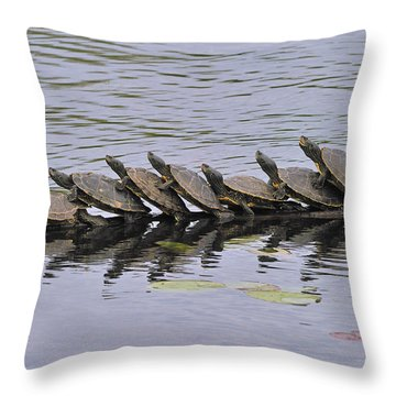 Map Turtles Throw Pillow by Tony Beck