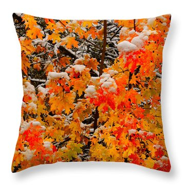 Throw Pillow featuring the photograph Maple Glow Limited Edition by Greg Norrell