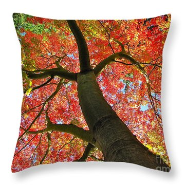Maple In Autumn Glory Throw Pillow