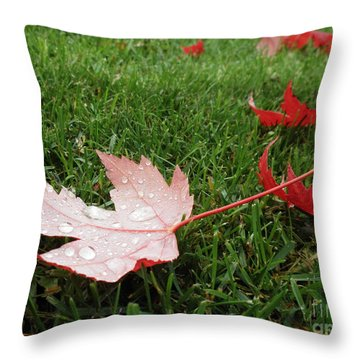 Maple Leaf In Canada Throw Pillow