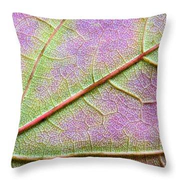 Maple Leaf Macro Throw Pillow by Adam Romanowicz