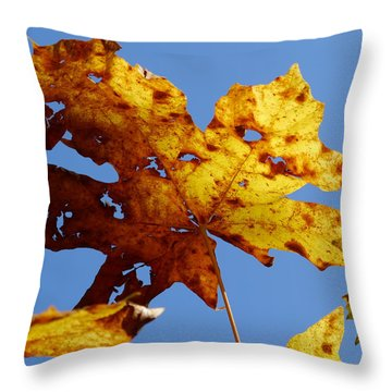 Maple Leaf On A Blue Sky Throw Pillow