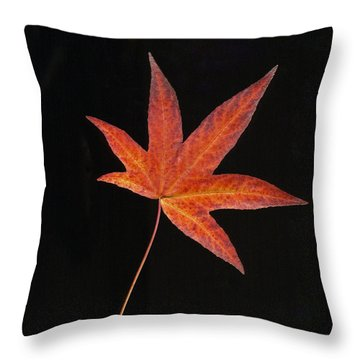 Maple Leaf On Black 2 Throw Pillow