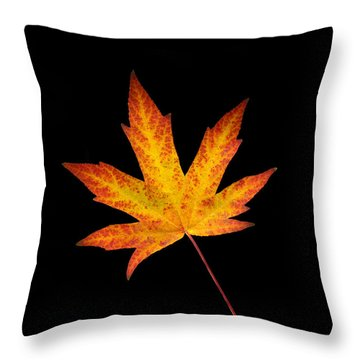 Maple Leaf On Black Throw Pillow