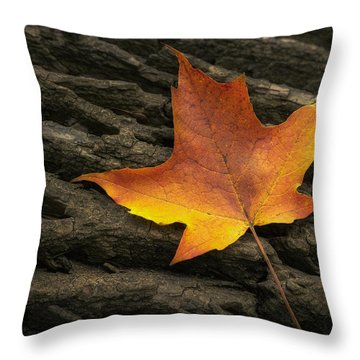 Maple Leaf Throw Pillow by Scott Norris