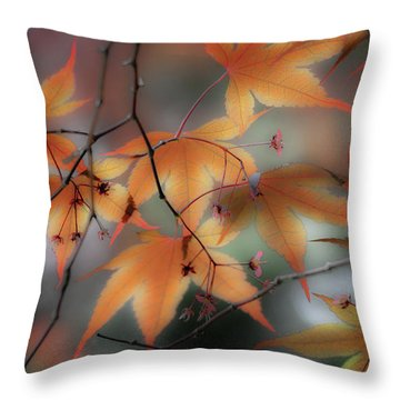 Maple Leaves 2 Throw Pillow
