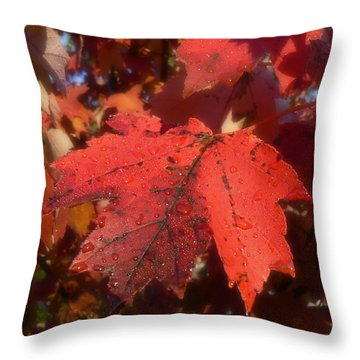 Throw Pillow featuring the photograph Maple Leaves In Autumn Red by MM Anderson