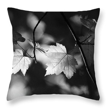 Maple Leaves In Black And White Throw Pillow