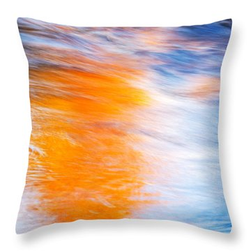 Maple Reflection Throw Pillow by Michael Hubley