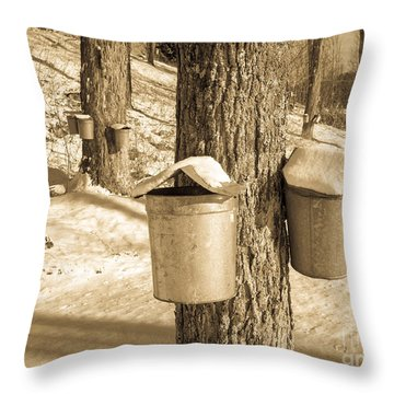 Maple Sap Buckets Throw Pillow by Edward Fielding