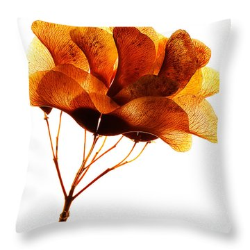 Maple Seed Pod Cluster Throw Pillow