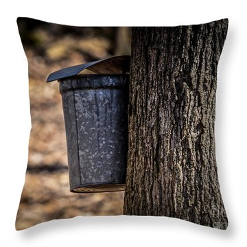 Maple Syrup Time Collecting Sap Throw Pillow
