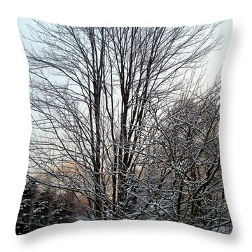 Maple Tree At Longwood Winter 2008 Throw Pillow by Patricia E Sundik