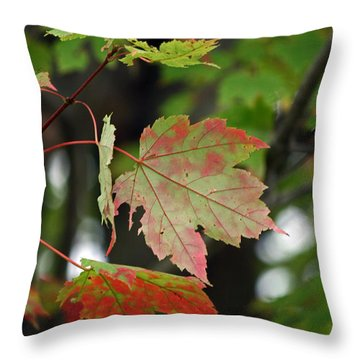 Maple Turning Throw Pillow