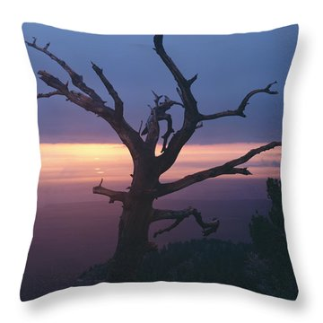 Marble View Snag-v Throw Pillow