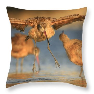 Marbled Godwit  Throw Pillow