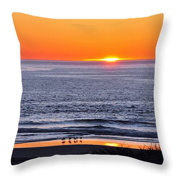 Throw Pillow featuring the photograph Marbled Godwits Reflecting A Sunset by Susan Wiedmann