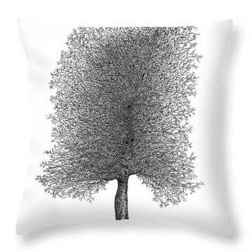March '12 Throw Pillow