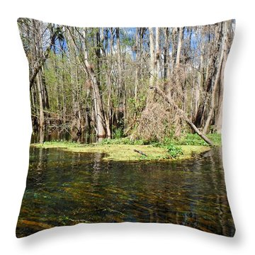 March On The Itchetucknee Throw Pillow