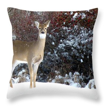 March Snow And A Doe Throw Pillow