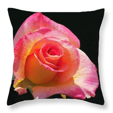 Mardi Gras Floribunda Rose Throw Pillow by Rona Black