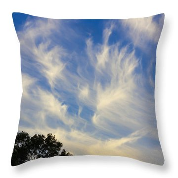 Mare's Tail Throw Pillow by John M Bailey