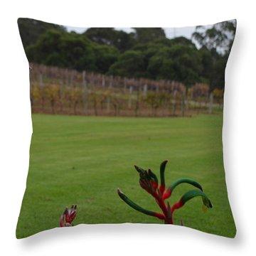 Margaret River Vineyard 1.2 Throw Pillow