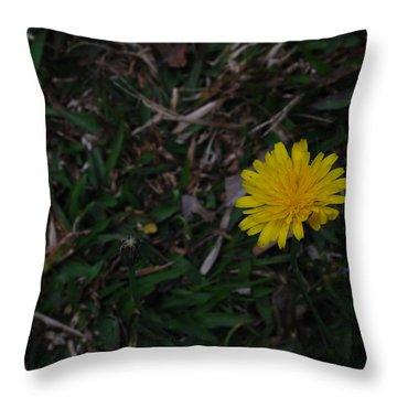 Margaritica Throw Pillow