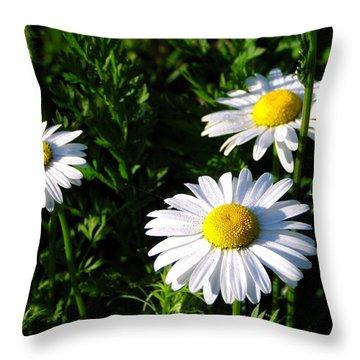 Margeritaville Throw Pillow