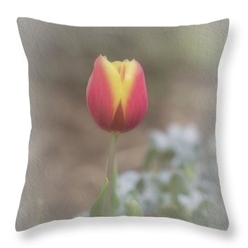 Throw Pillow featuring the photograph Maria by Elaine Teague