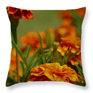 Throw Pillow featuring the photograph Marigolds by Ramona Whiteaker