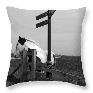 Throw Pillow featuring the photograph Marking The Way by Meaghan Troup