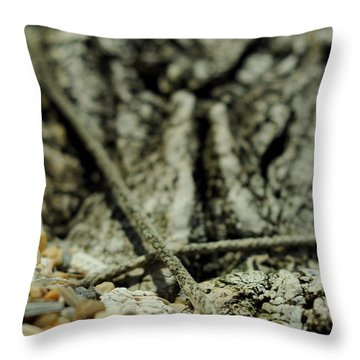 Marks The Spot Throw Pillow by Rebecca Sherman