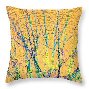 Throw Pillow featuring the photograph Marmalade Sky by Ann Johndro-Collins
