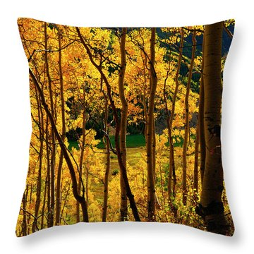 Maroon Lake Gold Throw Pillow