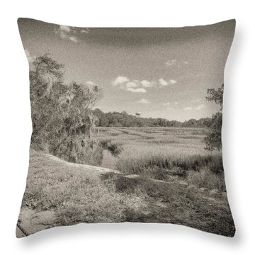 Marsh 2 Throw Pillow by J Riley Johnson