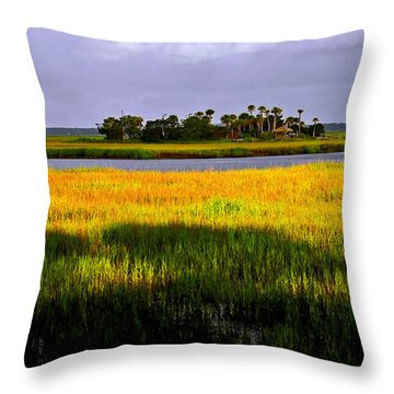 Throw Pillow featuring the photograph Marsh Island In Morning by Patricia Greer