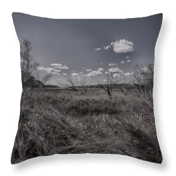 Marsh Throw Pillow by J Riley Johnson