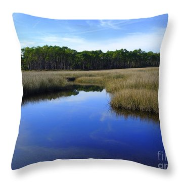 Marsh Water Creek Throw Pillow by Lew Davis